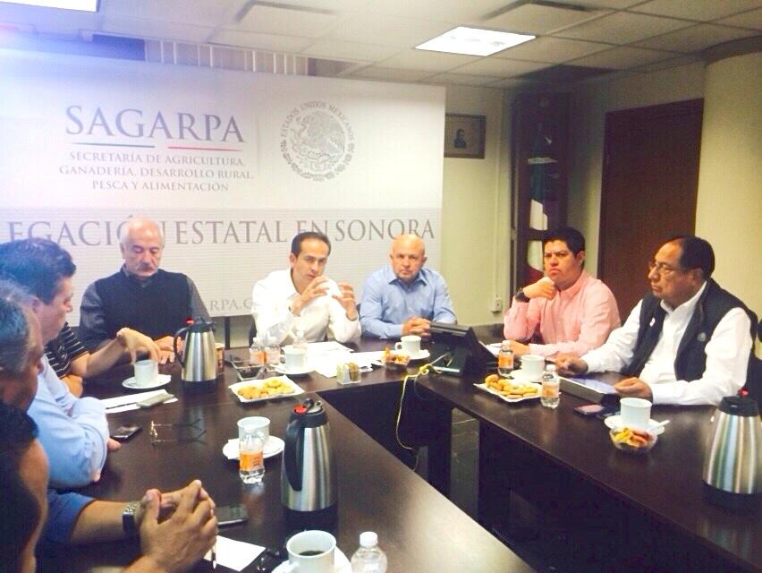 Iniciará SAGARPA Plan Integral de Desarrollo y Productividad en ríos sonorenses