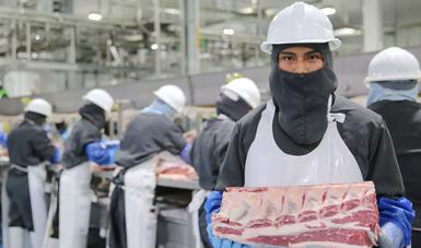 México logró ingresar de 68 productos de origen vegetal y 123 de origen animal a diversos países.