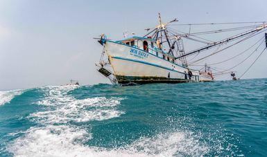 La pesca y acuacultura aportaron más de 2.1 millones de toneladas de pescados y mariscos a la producción alimentaria nacional.