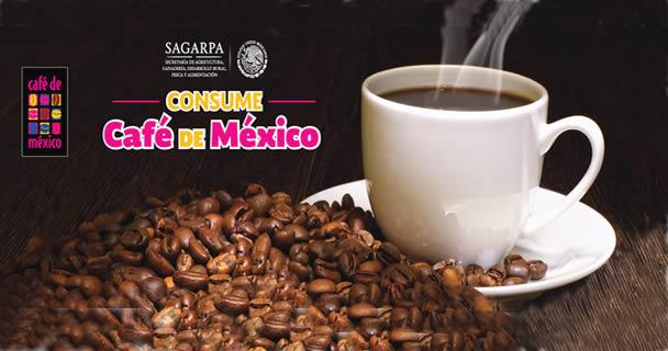 Estuvieron representadas 10 entidades del país: Chiapas, Veracruz, Oaxaca, Puebla, Guerrero, San Luis Potosí, Tlaxcala, Nayarit, Estado de México y Distrito Federal.