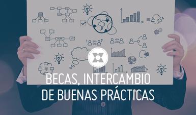 En el taller se discutió acerca de los criterios de selección y los proceso que consideran más relevantes para estudiantes mexicanos.