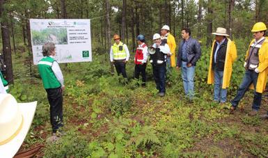 Grupo de ejidatarios y autoridades en zona forestal de Durango explicando acciones de conservación y sustentabilidad.
