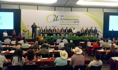 México exporta limón a 28 países del mundo, lo que es posible gracias al prestigio que el país ha logrado a nivel internacional.