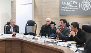 La SAGARPA y la UNAM diseñaron una estrategia para proteger a las abejas, mejorar y ampliar la cobertura de atención técnica al sector apícola mexicano y optimizar las condiciones en las que se desempeñan los productores de miel.