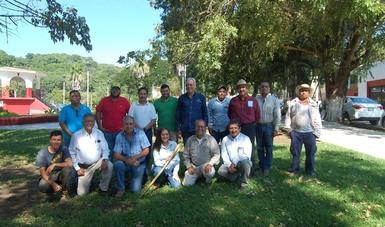 Establecimiento de plantaciones de bambú en México