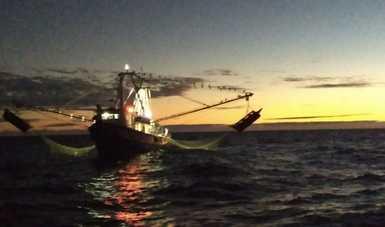 """PROFEPA aseguró una embarcación mayor denominada """"INTRÉPIDO"""", cuando realizaba actividades de pesca ilegal en el Área de Refugio para la protección de la vaquita marina y en el ANP Reserva de la Biosfera Alto Golfo de California y Delta del Río Colorado."""