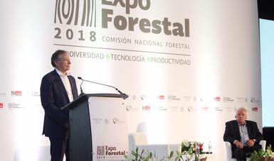 El Dr. Gerhard Dieterle, Director Ejecutivo de la Organización Internacional de las Maderas Tropicales (OIMT) durante su ponencia magistral en Expo Forestal 2018.