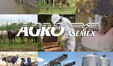 AGROASEMEX, empresa de aseguramiento Agropecuario.