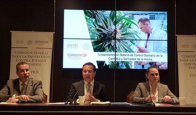 México ha avanzado en términos de políticas públicas para eliminar la prohibición del cannabis con usos médicos y de investigación