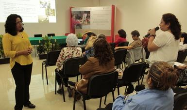 Curso sobre Ciudades amigables impartido en el Inapam.