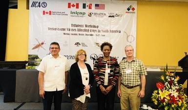 INIFAP imparte taller sobre virus y vectores que afectan a los cultivos de Norteamérica