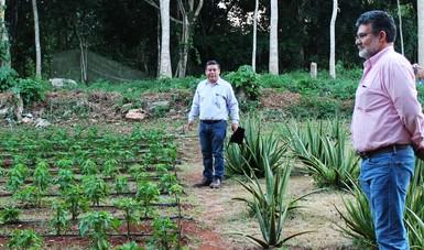 Director general del INIFAP se reúne con investigadores en Yucatán
