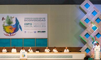 La aportación de nuestro país al Acuerdo de Cancún fue la integración de la biodiversidad en los sectores de agricultura, forestal, pesquero y turístico.