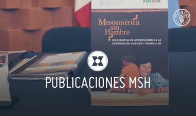El programa Mesoamérica sin Hambre es para la AMEXCID un proyecto emblemático de la cooperación de México hacia la región