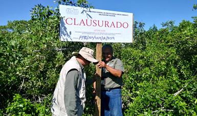 CLAUSURA PROFEPA DOS PREDIOS CON UNA SUPERFICIE TOTAL DE 3300 M2, EN LA RESERVA DE LA BIOSFERA RÍA LAGARTOS, EN YUCATÁN