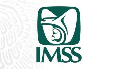 Logosímbolo del IMSS.