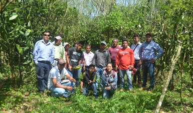 Curso de producción de vainilla para productores en Veracruz