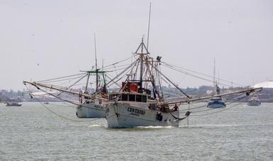Con el objetivo de promover el aprovechamiento sustentable del crustáceo, a partir de las 8:00 horas de este viernes, se decreta esta disposición oficial, en beneficio de los productores y el consumidor.