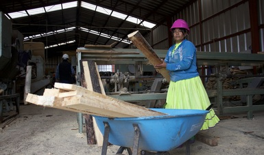 Guachochi, es un territorio con fuerte presencia de población Rarámuri y de extensas zonas donde el manejo forestal, industrialización y comercialización de la madera se ha convertido en una de las actividades productivas de la región.