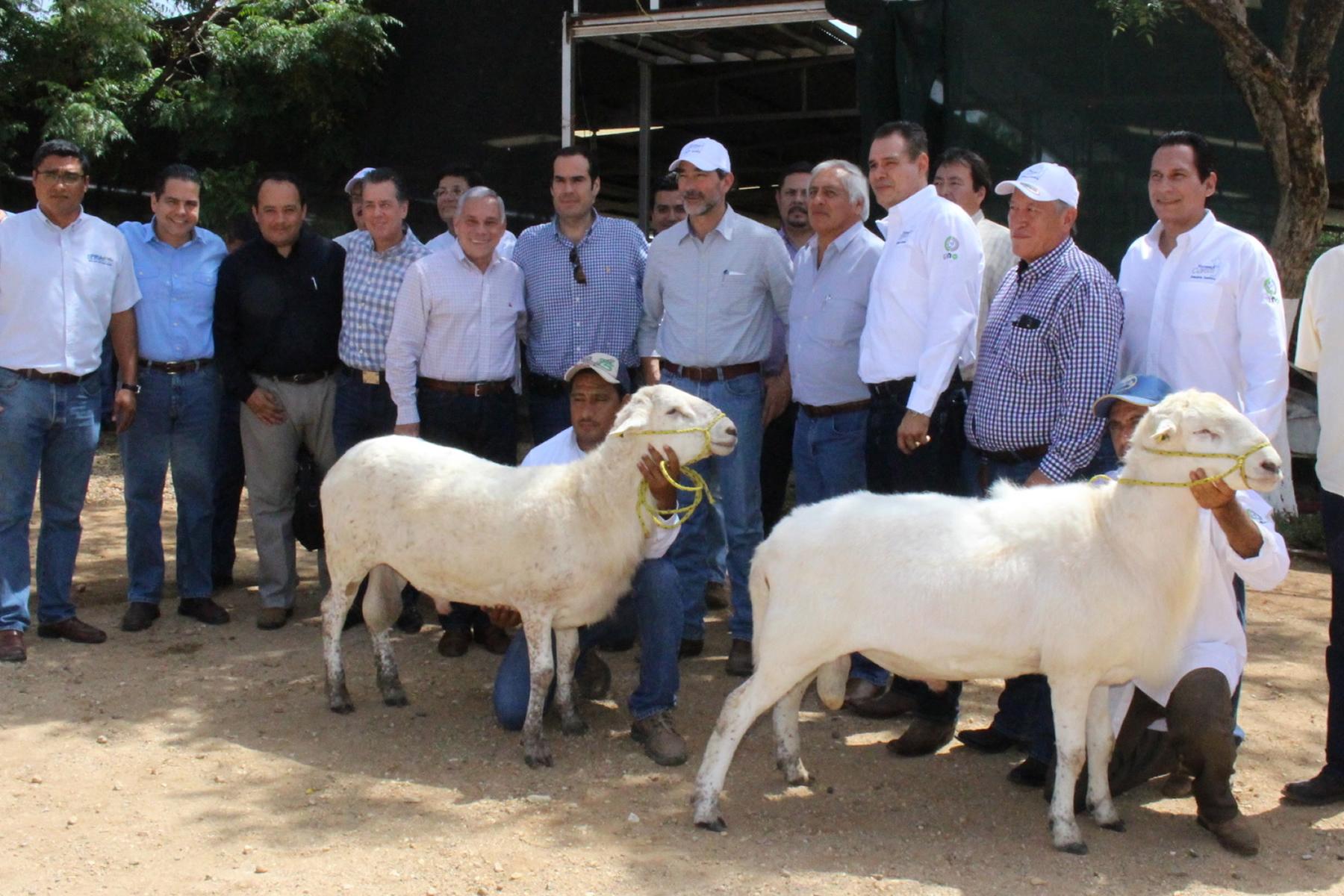 Francisco Gurría Treviño,  precisó que mediante esta inversión se han adquirido más de 195 mil cabezas de ganado para repoblamiento del hato nacional, en beneficio de alrededor de ocho mil pequeños