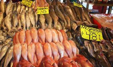 Los consumidores podrán encontrar especies del Pacífico, Golfo de México y el Caribe, de alto valor proteínico y costos que van de 30 hasta 100 pesos por kilogramo.