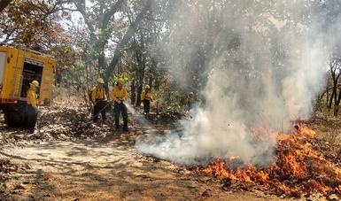 Las brigadas trabajan en acciones de combate y prevención de incendios forestales