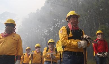El 98.3% de los incendios forestales son atribuibles a las actividades humanas y sólo el 1.7% son por causas naturales.