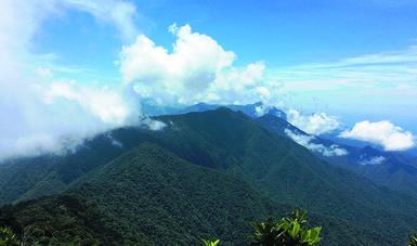 El objetivo es fortalecer la conservación de los ecosistemas y su biodiversidad.