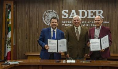 Establecen alianza Sader e IICA para la recuperación de suelos y aprovechamiento de agua en zonas áridas y semiáridas del país
