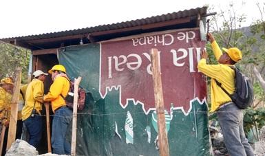 Fue posible la recuperación de 21 hectáreas invadidas a lo largo de 1 kilómetro en los limites del Parque Nacional Cañón del Sumidero