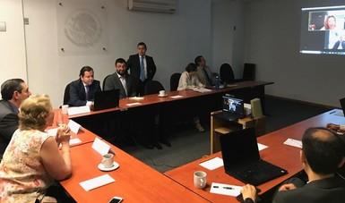 Sesión Extraordinaria de la Comisión Ejecutiva de la SESNA