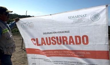 Profepa clausuró un predio por cambio de uso de suelo en terrenos forestales en Coatepec, Veracruz