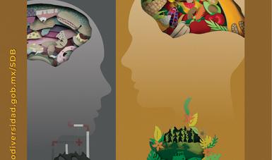 9a Semana de la Semana de la Diversidad Biológica