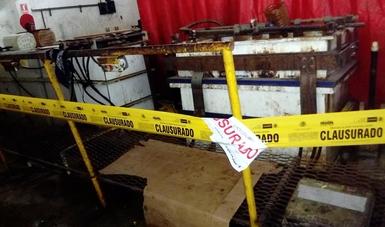 Clausura Profepa empresa en Escobedo, Nuevo León, por mal manejo de residuos peligrosos y contaminantes