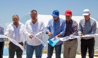 Con estas acciones se prevé incrementar la producción de camarón acuícola hasta en 25%; el centro está proyectado para funcionar con tres unidades genéticas y una inversión de alrededor de 250 mdp.