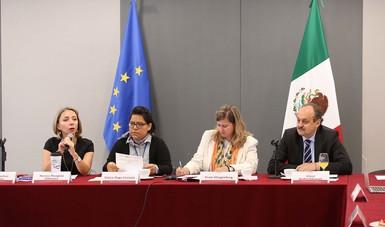 La Secretaría de Medio Ambiente y Recursos Naturales (Semarnat) y la Dirección General de Acción por el Cambio Climático de la Comisión Europea realizaron la VIII Reunión del Diálogo de Alto Nivel en Cambio Climático México-UE.