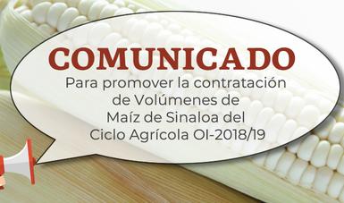 Contratación Maiz Sinaloa CO, OI-2018/19