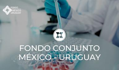 Durante el Simposio se abordaron temas de detección mediante métodos de biología molecular, secuenciación genómica, caracterización molecular, y análisis bioinformático.