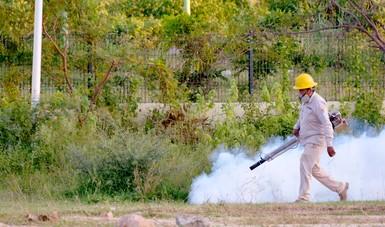 Acciones en contra del dengue.