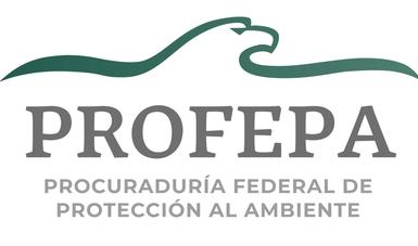 Inicia Profepa procedimiento de inspección por derrame de ácido sulfúrico en la API de Guaymas, Sonora