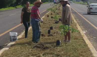 La participación de todos en la plantación de los árboles fortalece la relación con el medio ambiente.