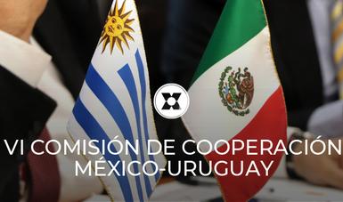VI Reunión de la Comisión de Cooperación Técnica Y Científica entre México y Uruguay.
