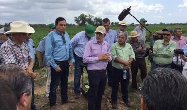 El Dr. José Fernando De La Torre se congratuló por los avances en las parcelas