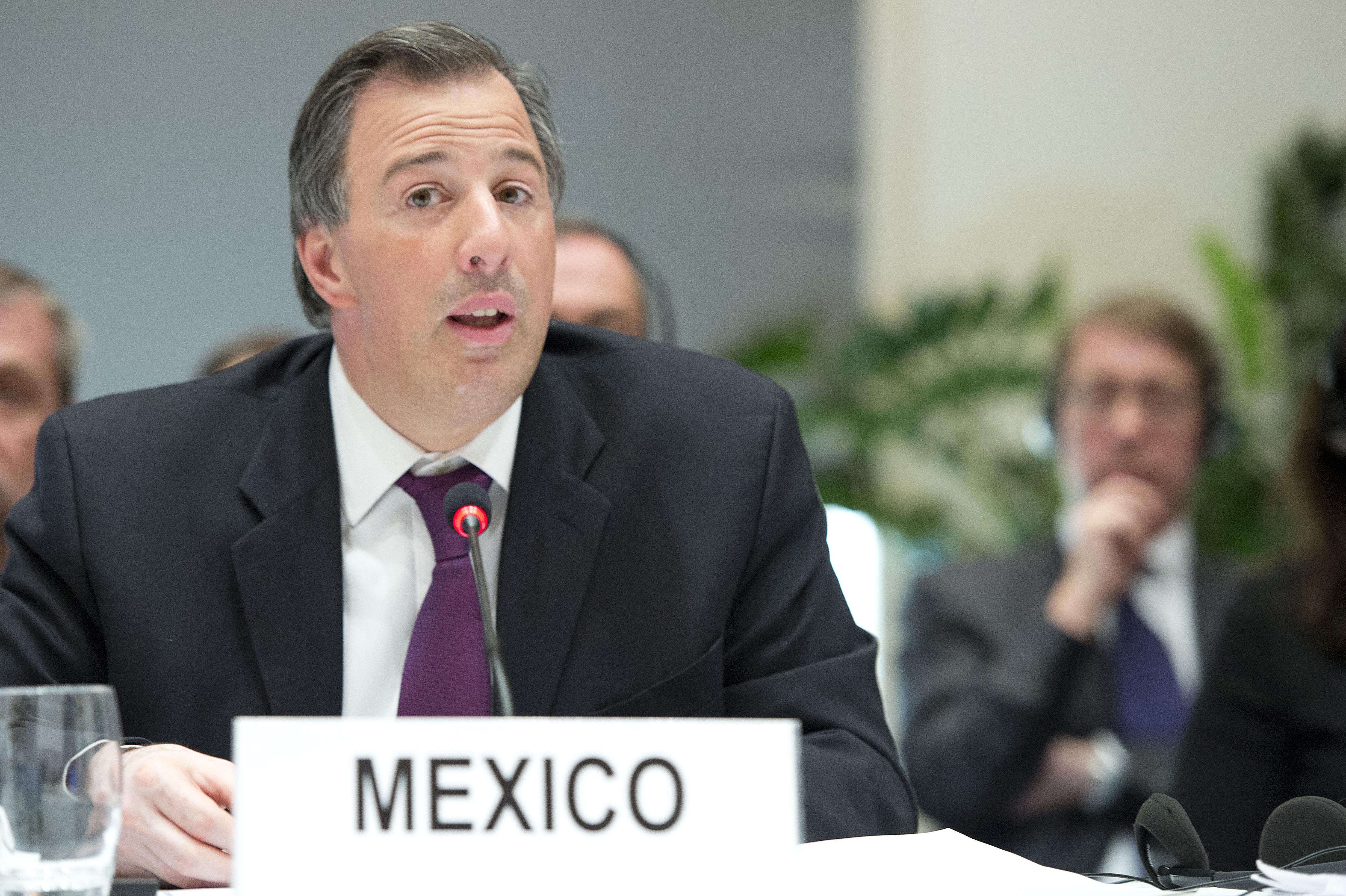Canciller Meade en la Segunda Conferencia Internacional de Ginebra