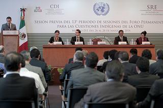 16 expertos del foro prepararán la agenda de trabajo para el 13° periodo de sesiones