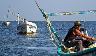En el polígono, en vigor a partir de mañana, se permitirá proteger zonas donde se ha registrado abundancia de especies de importancia comercial que sustentan pesquerías locales.