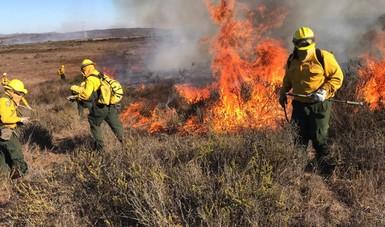 Luego de la atención de incendios forestales del periodo del 24 de octubre al 2 de noviembre, la Comisión Nacional Forestal (CONAFOR) informa que ya se desmovilizó parte de los recursos nacionales que se enviaron en apoyo.