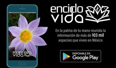 app EncicloVida