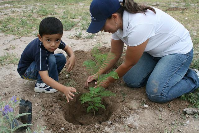 Acciones de Reforestación 2015.