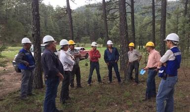 Una Certificación Internacional FSC es garantía de que toda la madera obtenida por este grupo es resultado de un manejo responsable de los recursos naturales.
